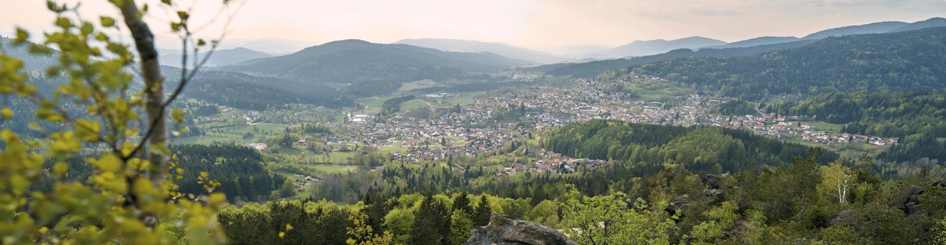Frühling am Silberberg