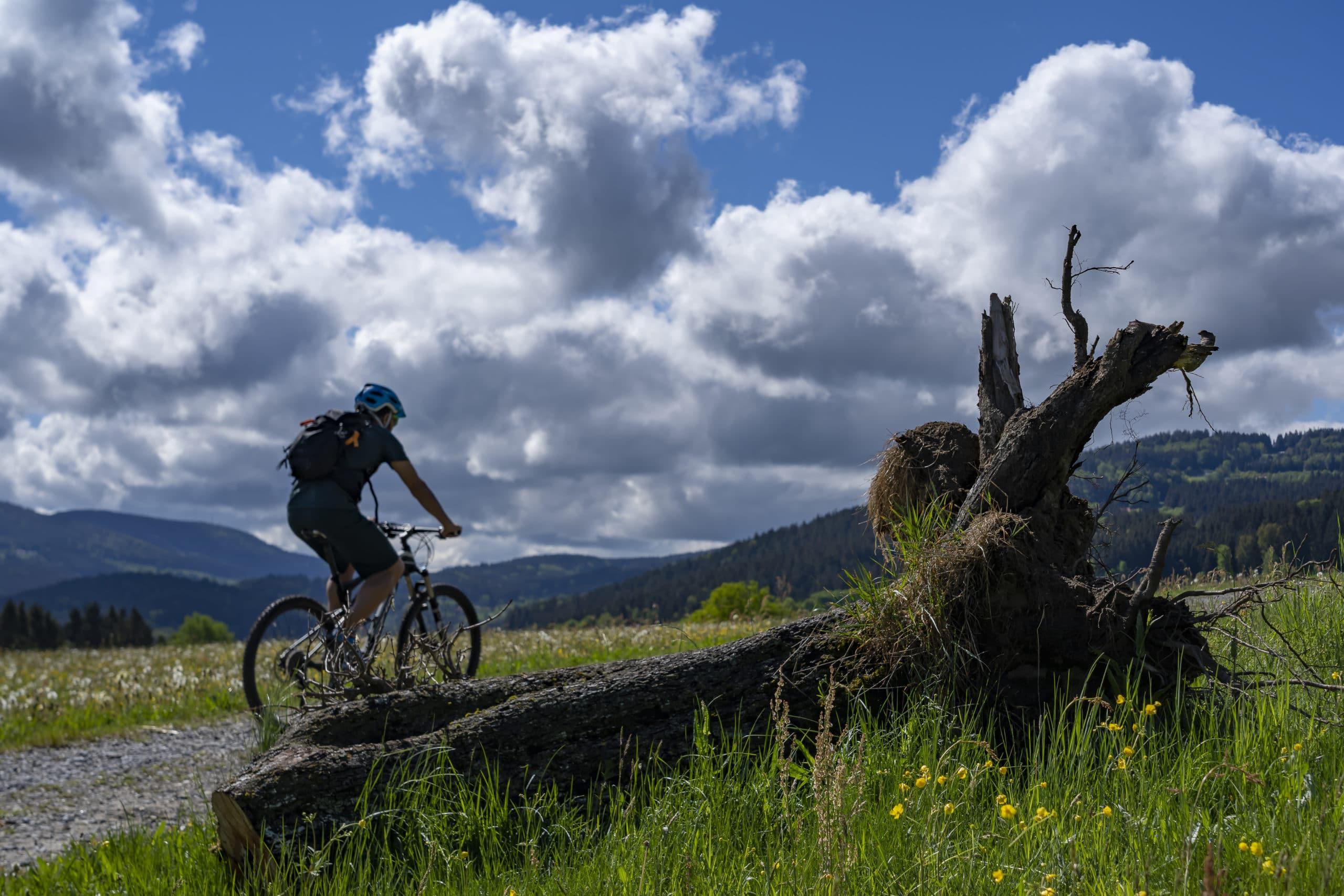 E-Bikes in Bodenmais