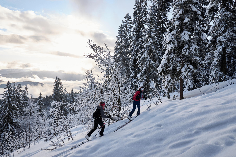 Skitour am Arber