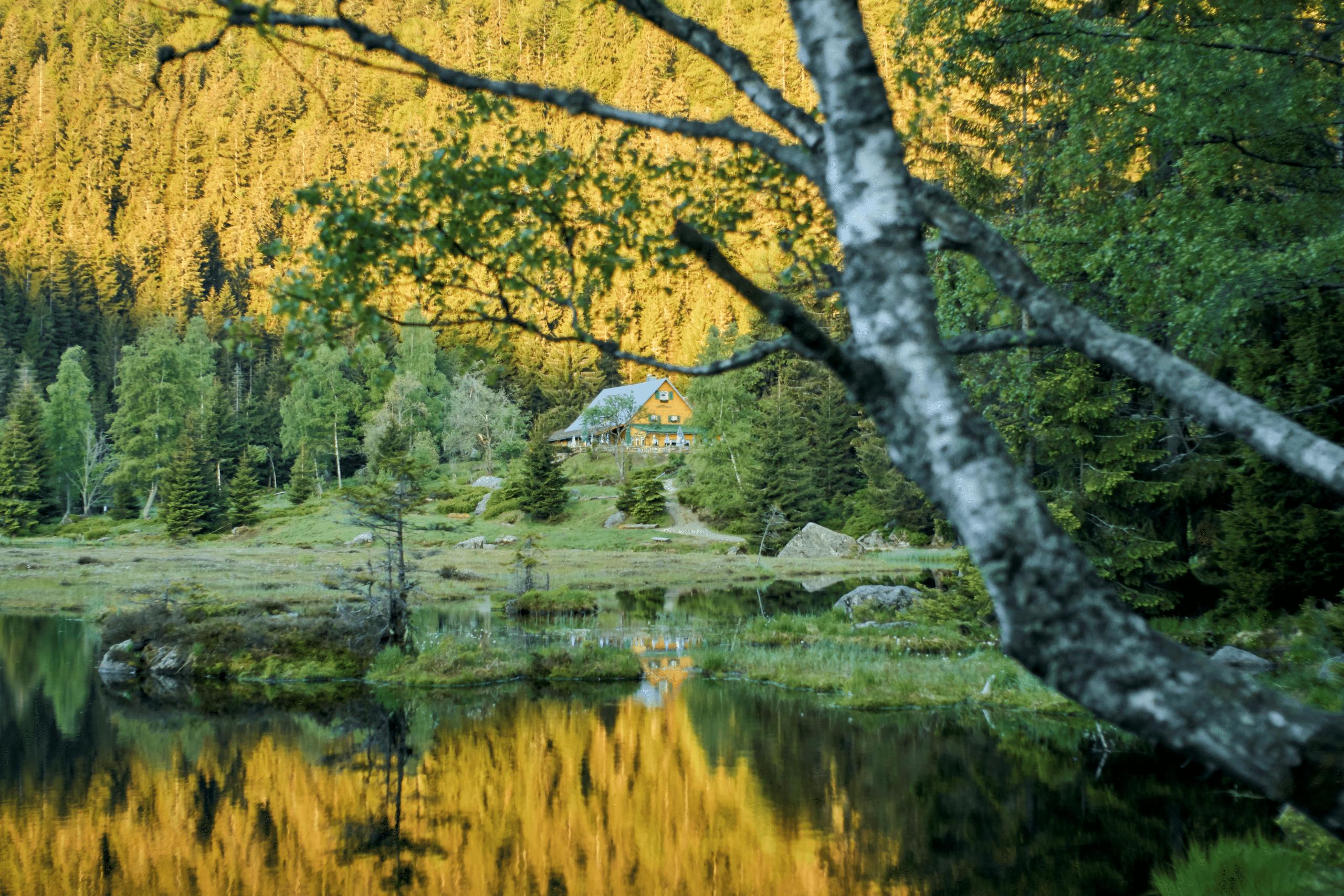 Sonnenaufgang am Kleinen Arbersee