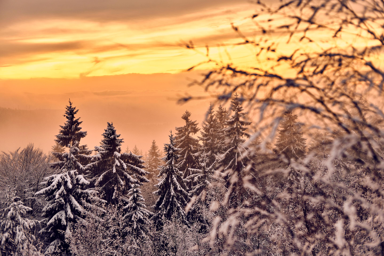 Winterlandschaft am Silberberg – der Himmel glüht